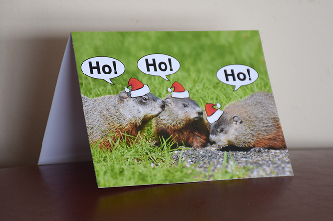 ho ho ho groundhog greeting card by Brithikesontario