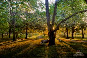 thompson memorial park dawn by Brithikesontario